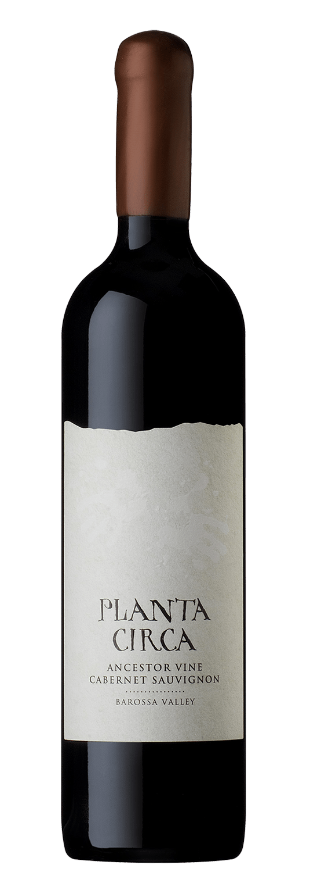 Planta Circa Ancestor Vine Cabernet Suvignon